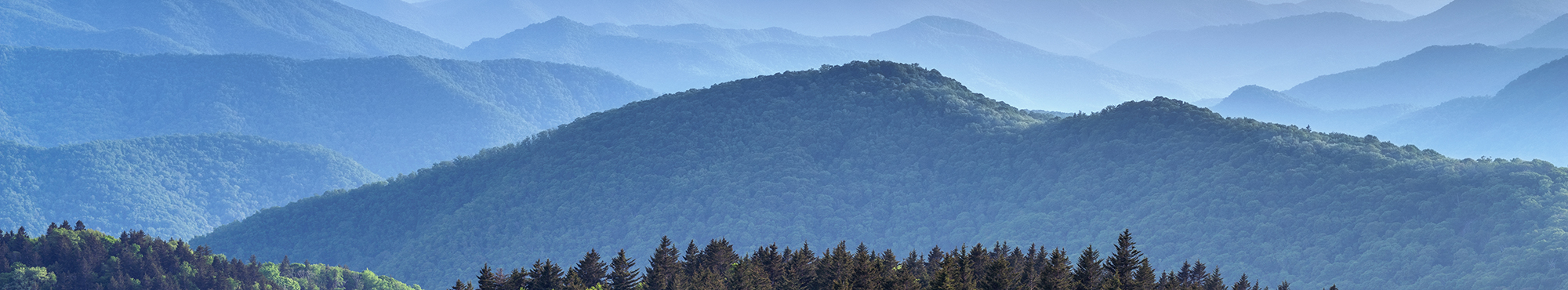 Things to Do in the Smoky Mountains